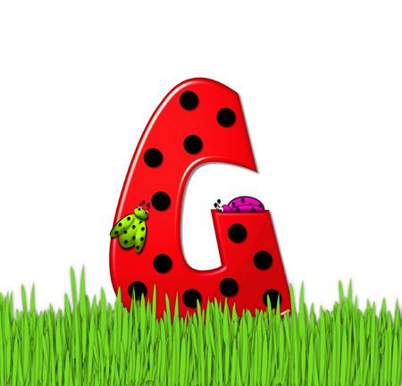 """mariquitas: El rojo de la letra G, en el conjunto de alfabeto de """"Lady Bug Red,"""" tiene grandes lunares negro y está decorado con mariquitas en 3D. Carta se encuentra en alto, hierba jardín. Foto de archivo"""