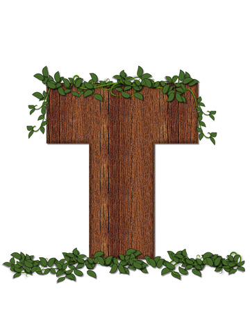 The letter T, in the alphabet set Deep Woods is filled with wod texture and has vines growing all over it. It coordinates with the alphabet set Deep Woods Owl.