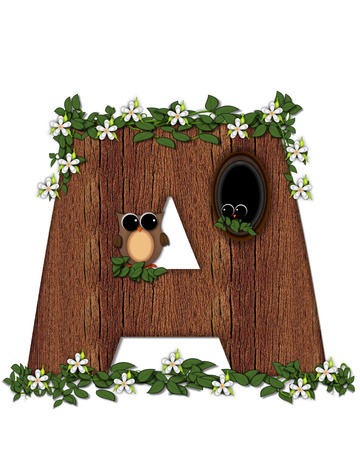 The letter A, in the alphabet set Log Home is filled with wod texture.  Flower bloom on vines hanging on letter.  One owl hides in knothole and the other outside the stump home.