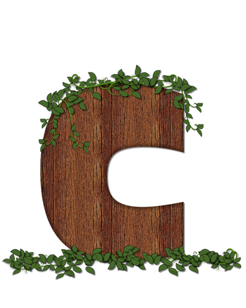 The letter C, in the alphabet set Deep Woods is filled with wod texture and has vines growing all over it. It coordinates with the alphabet set Deep Woods Owl.