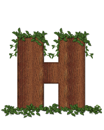The letter H, in the alphabet set Deep Woods is filled with wod texture and has vines growing all over it. It coordinates with the alphabet set Deep Woods Owl.