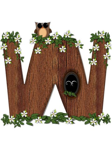 The letter W, in the alphabet set Log Home is filled with wood texture.  Flower bloom on vines hanging on letter.  One owl hides in knothole and the other outside the stump home. Stock Photo