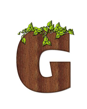 wood grain: The letter G, in the alphabet set Woodsy, is filled with wood grain and resembles a tree. Three dimensional vnes are spread across top of letter.