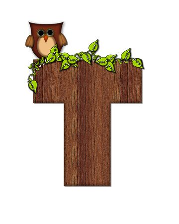 The letter T, in the alphabet set Woodsy Owl is filled with wood texture.  3D vines hang on letter.  Letter is decorated with a brown owl.