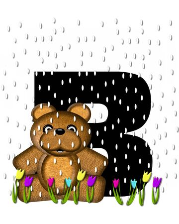 showers: The letter B, in the alphabet set Teddy April Showers, is black.  Brown teddy bear and flowers decorate letter.  Tulips bloom as April showers fall. Stock Photo