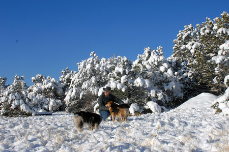 laden: Man kneels in snow surrounded by his Australian Shepherds.  Trees laden with snow surround him in back. Stock Photo
