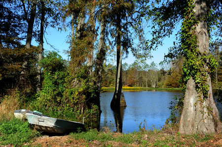 Two boats sit besides a slough in Northern Louisiana.  Wildflowers are in bloom at edge of water.