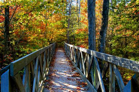 Rustieke houten brug lonkt verkennen op een zonnige ochtend in de herfst. Locatie is North Arkansas.