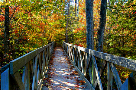 Rustic, wooden bridge beckons exploring on a sunny morning in Autumn.  Location is North Arkansas.