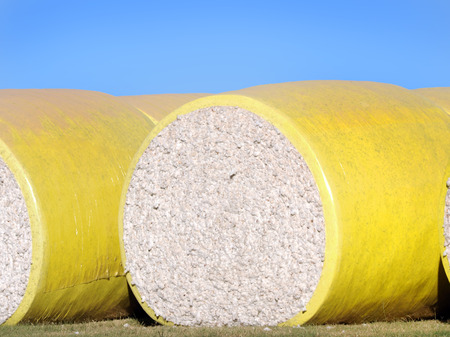 Large yellow bale, of raw cotton, lays ready for shipment in Eastern Arkansas.