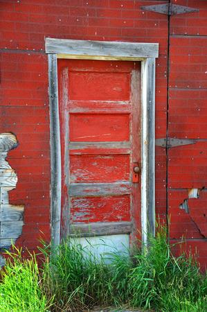 Red, wooden door has cracked and peeling paint.  It is overgrown with weeds. Stock Photo