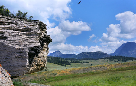 American Cliff Swallows nest on Soda Butte, a dormant hot springs, in Yellowstone National Park.  Beyond is a vista of Lamar Valley and Yellowstone mountains.