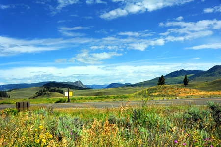 Road travels through Lamar Valley in Yellowstone National Park.  Scenic vista shows mountains, hills, and wildflowers.  Rustic sign reads Caution Wildlife on Roadway. Stock Photo