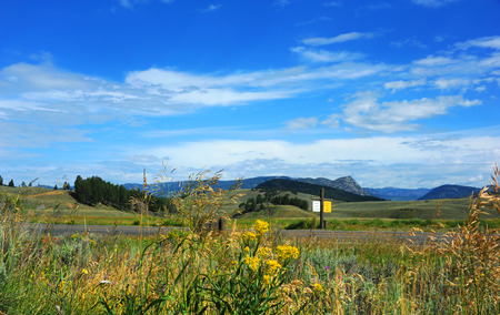 blacktop: Road runs in front of the rolling hills of Lamar Valley in Yellowstone National Park.  Sign say Caution Wildlife on Highway.