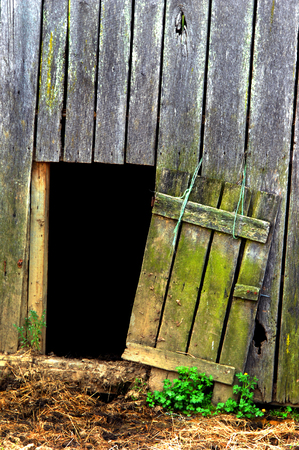 Rustic wooden barn door hangs open supported by green twine.  Hay and mud cover ground before entry.  Darkness fills interior. Stock Photo
