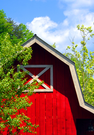 Wooden barn, painted red with white trim, is neat and well maintained.  Blue sky and green trees frame corner of barn. 写真素材