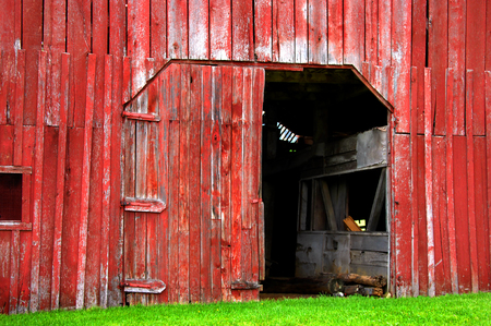 Red wooden barn is faded and old.  One door is open and the other is broken off. Bright green grass covers base of barn.