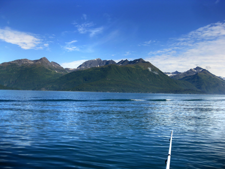 Fishing rod sits in lower right corner of picture.  Fisherman is enjoying the view of the Chugach Mountains while fishing on Valdez Bay.