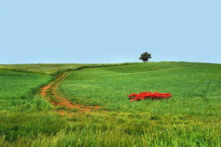 Large green field stretches to the horizon.  An orange plow sits in deep green grass.  Lone tree sits at top of winding dirt road that travels to the hilltop. Stock fotó