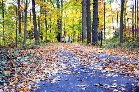 Four children start down a path strewn with leaves.  Autumn color fills Tennessee woods on this early morning.  Children are holding hands.