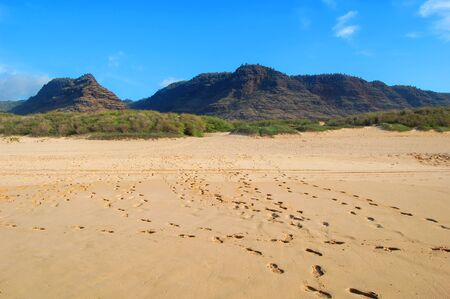 Footprints lead every direction as multiple visitors enjoyed the view at Polihale State Park on the Island of Kauai, Hawaii. Banco de Imagens