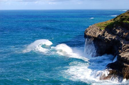 Curling wave approaches the rugged cliffs of the Kilauea Point Wildlife Sanctuary on the Island of Kauai, Hawaii.  Turquoise waters reach for the horizon. 스톡 콘텐츠