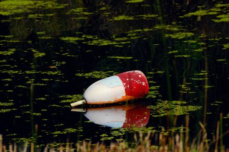 Large float has been forgotten and discarded in a dark green pool floating with duck weeds.  Its reflection is mirrored in the still water.
