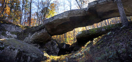 Sunlight filters down through the trees to illumine the Natural Bridge in North Arkansas.