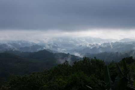The morning fog at him