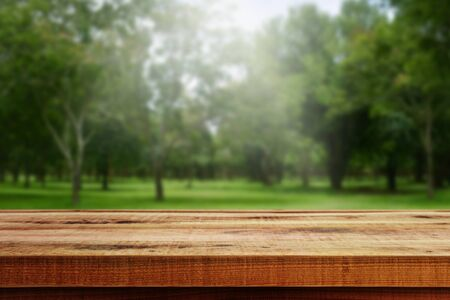 Wooden table and blurred forest background.