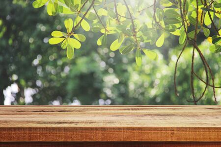 Wooden table and blur garden background. Stockfoto