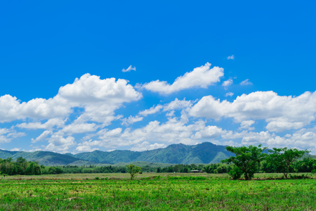 Mountain and blue sky. Composition of nature.