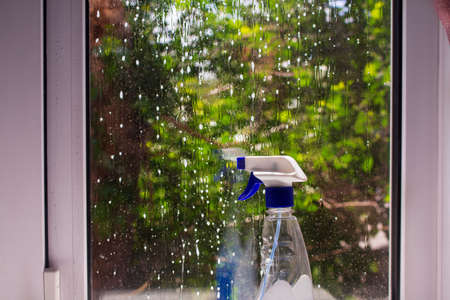 dirty window wetted with foam with a bottle of detergent. Behind glass a tree with green leaves