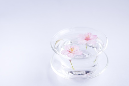glass of cherry blossoms floating photo