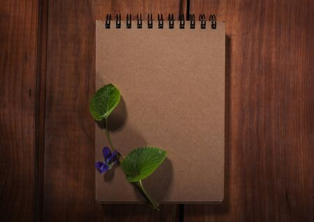 desperado: Old notepad on the wood background