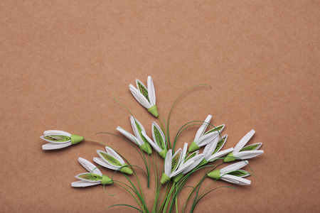 Snowdrops make in quilling art isolated on brown background
