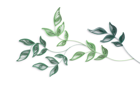 quilling green leaves on a white background