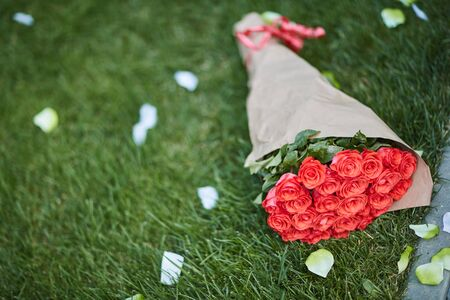 beautiful bouquet of red roses on the grass, rose petals
