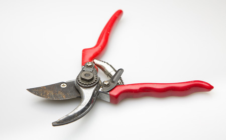 hedging: Old red garden secateurs isolated on a white background