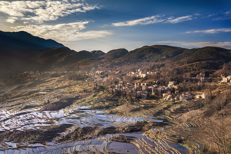 terracing: Rice terrace field on mountain in water season with morning sunrise