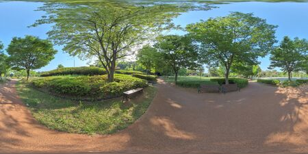 Panorama 360 degrees view in park. Forest and Park 360 image, VR AR content.