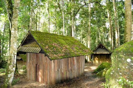cabin in the forest, cabin in the woods