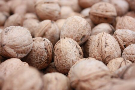 circassian: Circassian walnuts