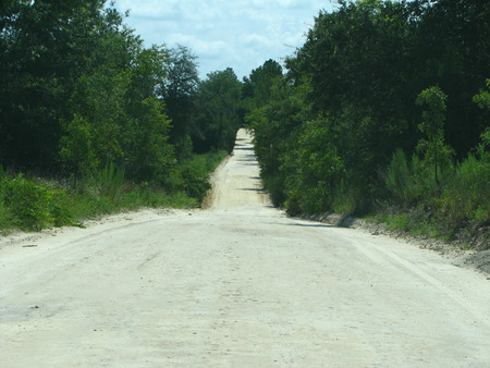 backroad: A backroad in Florida