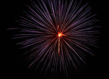 フロリダ州の夜空に花火が爆発します。 写真素材