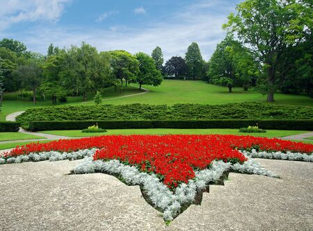 Blossoming colorful flowerbed in summer city park photo