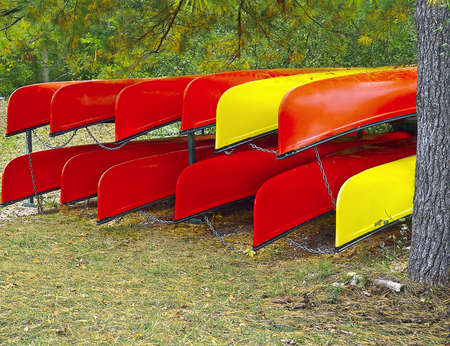 Rack of colorful kayaks at forest riverbank