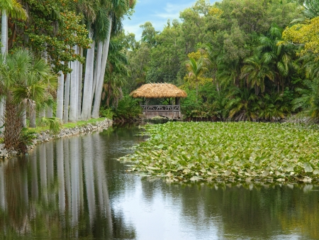 thatched: Thatched hut on the lake in tropical park