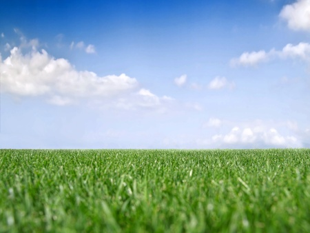 mow: Grass and sky with clouds