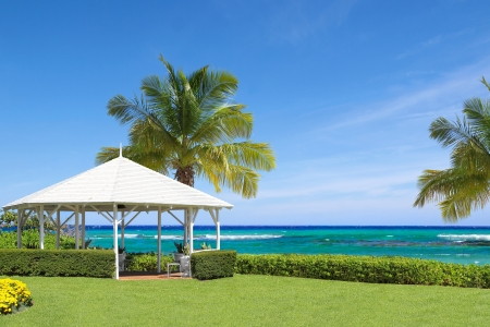 Tropical White Gazebo on a Sea Shore with Palm Trees